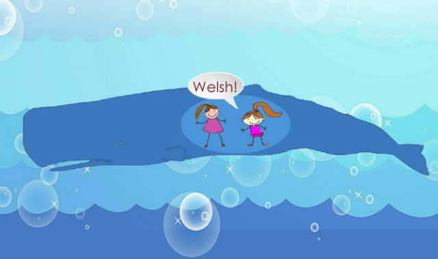 welsh-whale3